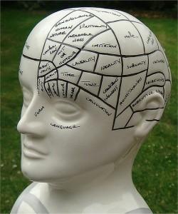 potential, mindset
